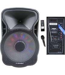 Speaker Bluetooth wireless 12 inch