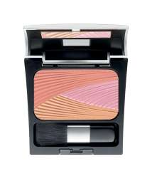 Blush Powder By MAKE UP FACTORY